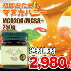 【送料無料】☆お試し価格☆医療の国際規格マヌカハニーMGS8+(MGO200)250g(遮光容…