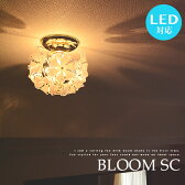 BLOOM SC:ブルーム プチシーリングライト 1灯 LED電球対応 プチシャンデリア シーリング 花柄 シェード プルメリア ナチュラル カントリー ダイニング ゴールド 寝室 玄関 廊下 階段 リビング ワンルーム 間接照明 照明 ライト 上品 可愛い ゴージャス 華やか 送料無料(2-2