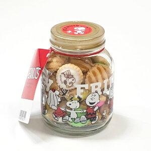 【送料無料 スヌーピー ボトルクッキー】1000円ポッキリ ビスケット クッキー スヌーピーボトル クッキーボトル アイシングクッキー ビスケット お菓子 グッズ ギフト 送料込