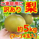 【訳あり】和梨7〜14玉(約5kg) 【送料無料】日本一大産地「茨城」より発送!ご家庭用にどうぞ。