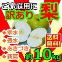 [訳あり]和梨 約10kg(12〜40玉入)[送料無料]味は...