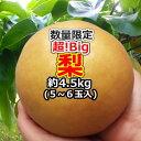 『超!Big』梨 5〜6玉(約4.5kg