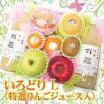 彩りLりんごジュース760pix