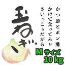 栃木県産玉ねぎ