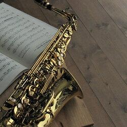 アルトサックス セルマー  ジュビリー・シリーズ3レベルの高い吹奏楽部で演奏する中学生、高校生…