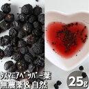 タスマニアペッパー実(25g)