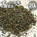 有機JAS認定♪オーガニック栽培♪ペパーミント茶葉(20g)メディカルハーブ♪健康茶♪胃腸を整える♪口臭予防にも♪偏頭痛や生理痛など痛みを和らげる♪爽やかな香りでリフレッシュ♪【メール便】