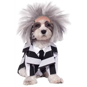 Beetlejuice DogFunny Pet Outfit クリスマス ハロウィン コスチューム コスプレ 衣装 変装 仮装画像