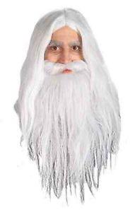 Gandalf ウィッグ Hobbit ホビットLord of the Rings ロードオブザリングWizard アクセサリー クリスマス ハロウィン コスチューム コスプレ 衣装 変装 仮装画像