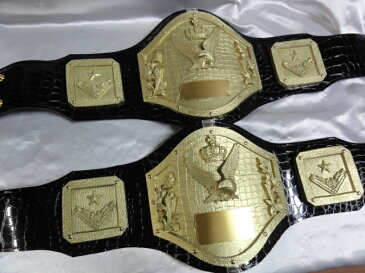 シマスポーツ製 多目的チャンピオンベルト 同種2本セット タッグチャンピオンにも使えます LSTD-575 サービス価格