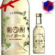 ワインハイボール 葡う酎 (ぶうちゅう) ハイボール 250ml 9% [本坊酒造 マルス山梨ワイナリー/甘味果実酒 白ワイン 発泡 やや甘口]