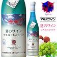 白ワイン 夏のワイン マスカット&ライチ 500ml 7% [本坊酒造 マルス山梨ワイナリー/白ワイン 微発泡 やや甘口/季節のワイン]