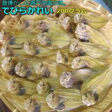 瀬戸内の定番・なつかしの味♪徳島産でびらかれい200gがんぞうひらめ出平鰈ガンゾウビラメガンゾビラメデビラカレイカレイの干物おつまみ