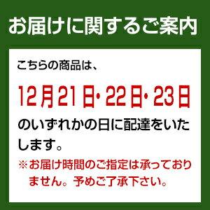 バンダイキャラデコクリスマス仮面ライダージオウ(チョコ)【240_X】
