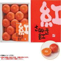 お中元 ギフト丸大食品ローストビーフセットGLH-30(210_20夏)