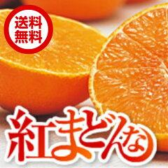愛媛生まれの新柑橘で、ゼリーのような新食感!【紅まどんな】【送料無料】 紅まどんな 約2.7kg...