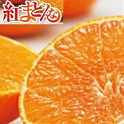 【送料無料】愛媛県産紅まどんなL〜2L3kg【ご家庭用】【お取り寄せ】【紅マドンナ】