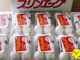 プリンエッグ(温泉卵)一度食べたらヤミツキ温泉卵50個(タレ付)【敬老の日ギフト】【プレゼント】【御見舞い】【お礼】【お祝い】【お歳暮】【ギフト】【10P03Dec16】