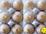 高級卵うこっけいの卵6個入り×2パック=12個贈答品に最適!【プレゼント】【お礼】【お祝い】【御見舞い】【お歳暮】【敬老の日ギフト】