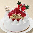 クリスマスケーキ 予約 2019 モンサンミッシェル アレルギー対応クリスマスケーキ のし・包装不可