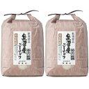 天日乾燥米魚沼十日町産こしひかり 1回注文 2袋 計10kg のし・包装不可 1
