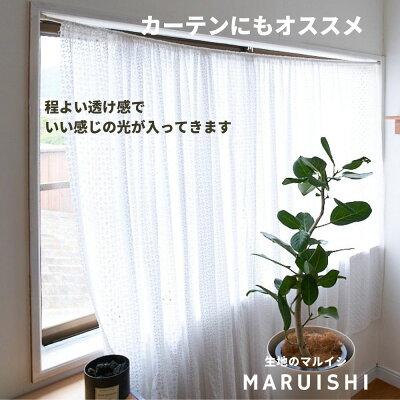 生地コットンエンブロイダリーライト刺繍ホワイト50cm単位【商用利用可】