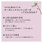 【訳あり】オーガニックタオルガーゼバスタオル湯上り【通常サイズ】《日本製両面バスタオル》【ファブリックプラスFabricPlus】