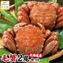 北海道産 毛ガニ 毛蟹 毛がに400g前後×2尾セット 蟹 ...