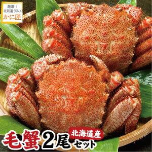 北海道産 毛ガニ 毛蟹 毛がに400g前後×2尾セット 蟹 カニ かに けがに 送料無料 ギフト お歳暮