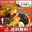 【メール便♪送料無料】カレー屋さんの味スープカレーの素濃縮スープ2袋入(MIXスパイス付)Curry World カレーワールド【代引不可・着日指定不可・同梱不可】