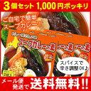 【お買い得3個セット】【メール便♪送料無料】カレー屋さんの味スープカレーの素濃縮スープ2袋入×…