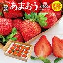 福岡産 高級品種 あまおう 1箱 約400g (12粒入or...
