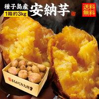 種子島産安納芋1箱(約3Kg)おひとり様4箱まで4箱購入で送料無料10月末より発送スタート予定キャッシュレス5%還元