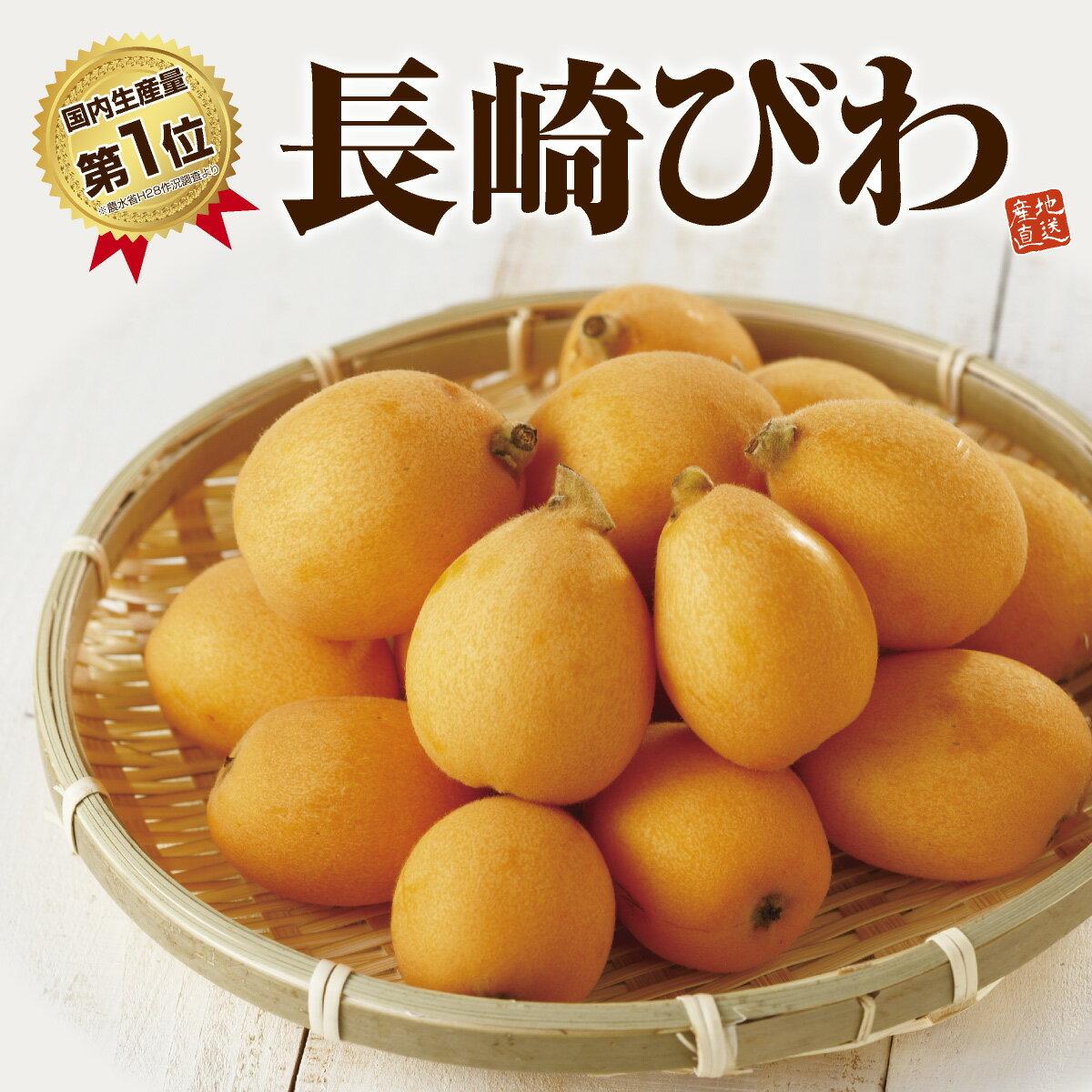 フルーツ・果物, びわ  L 12 (500g) 2