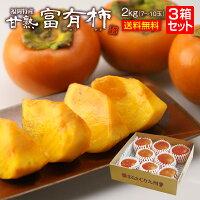 福岡特産甘熟富有柿3箱6kg