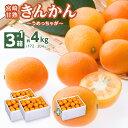金柑 きんかん 完熟金柑 うめっちゃが 3箱 2Lサイズ(3