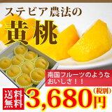 中野さんの桃、スイート光黄、黄金桃、黄貴妃