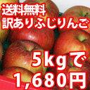 訳ありふじりんごが5kgも入って送料無料1680円!【訳あり】山形産ふじりんご5kg