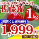 【訳あり】山形産さくらんぼ(佐藤錦)1kg