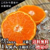 濃厚柑トロのお蜜柑「蜜ツ星(みつぼし)」茶箱サイズ混合訳あり品約1kg入