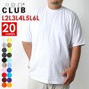 PRO CLUB 大きいサイズ メンズ ビックTシャツ メンズ 綿100% 全20色 L/2L/3L/4L/5L/6L