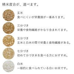 【新米】【北海道の米屋しか手に入らない】三崎さんが育てた「彩(あや)」10kg(5kg×2袋)29年産北海道もせうし産<玄米・白米・分づき米>【送料無料】※沖縄・離島を除く