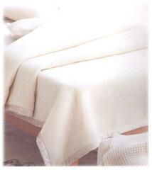 【送料無料】100%シルク毛布