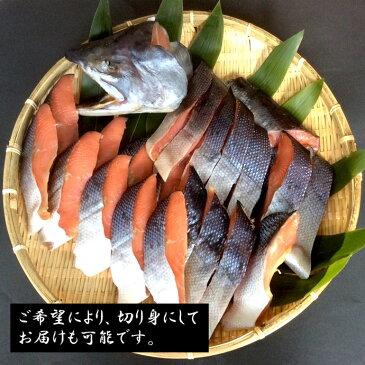 【送料無料】新巻鮭 あま塩仕込み(銀鮭)三陸産鮭、さけ、サケ、サーモン、銀鮭、無添加 sanriku Salmon 2.5kg前後 冷凍便