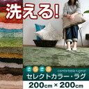20色・7サイズから選べるラグ 洗えるタイプセレクトカラー・ラグ カーペット丸洗いOK! オールシーズン使える床暖房 & ホットカーペッ…