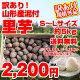 【訳有り】【送料無料】山形県産泥付き「里芋」お徳用5kg(S〜Lサイズ)