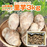 【送料無料】山形県産里芋3kg(M〜Lサイズ)