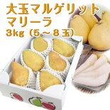 洋梨マリゲリットマリーラ3kg(5-8玉)