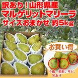洋梨マリゲリットマリーラ5kg(9-12玉)