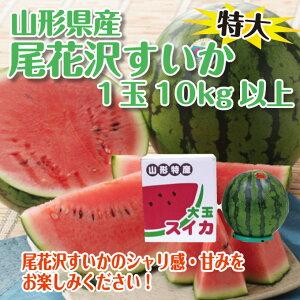 【お中元・ギフト特別価格】日本一の産地からお届けするすいかはシャリっと食感が違います!【...